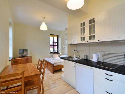 Studio z pełnym aneksem kuchennym - Apartamenty przy Parku