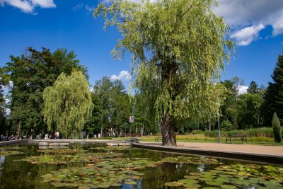 Rabka Zdrój - Park Zdrojowy